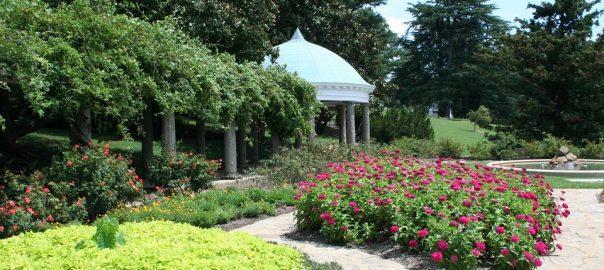 landscaping condo area